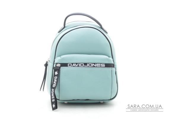 Рюкзак David Jones 5989-2T green (БЕЗ УПАКОВКИ)