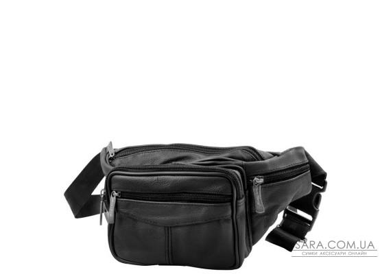 Шкіряна чоловіча поясна сумка ETERNO (ЭТЭРНО) DET702-2